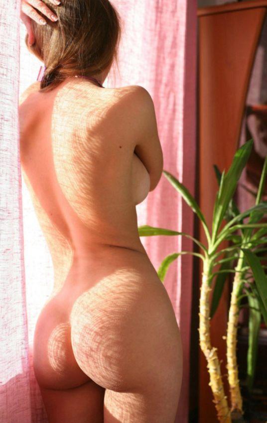 Сиськи и задницы